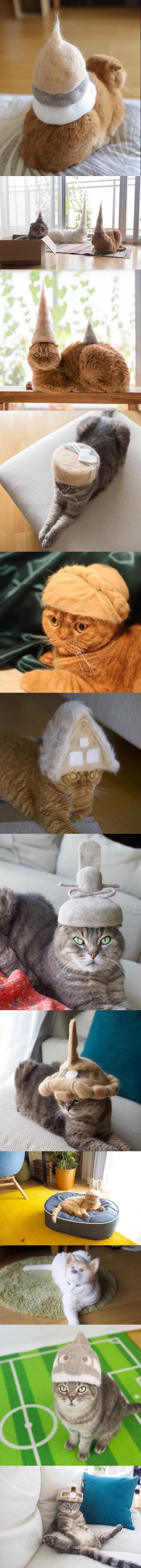 고양이털 재활용