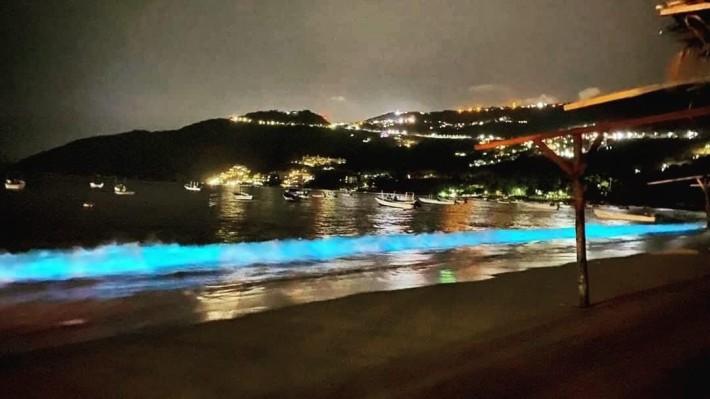 세계최고의 휴양지 멕시코 아카풀코 해변에 인간들을 막았더니.jpgif