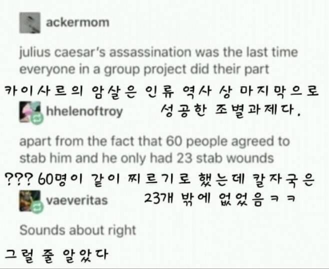 인류 역사상 마지막으로 성공한 조별과제